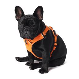Ruffwear Front Range Sele Orange Poppy