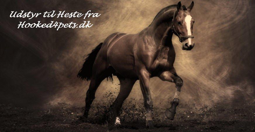 Flot Udstyr til heste - heste køledækken og legetøj til heste WB-02
