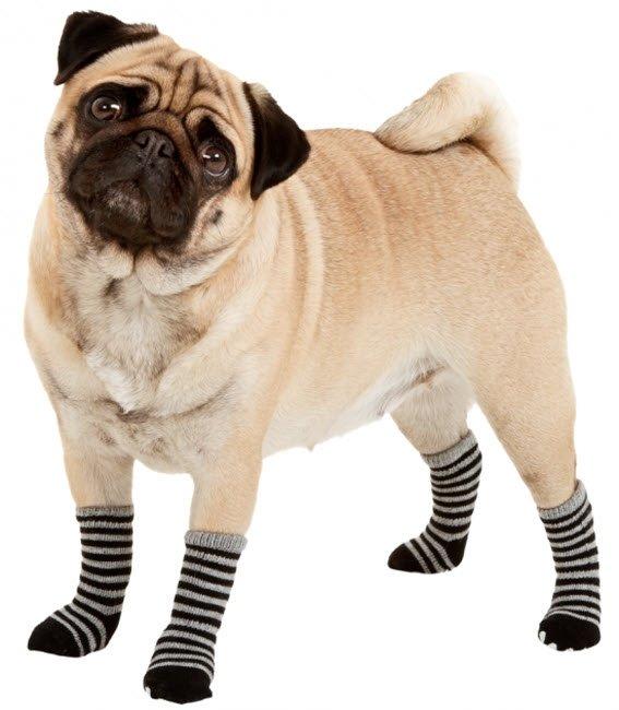 Super Skridsikre Sokker til Hund sort/grå TG-32
