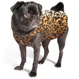 GoldPaw Stretch Fleece Pullover Leopard design