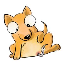 ormekur hund