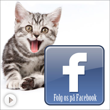 Hundebutik på facebook