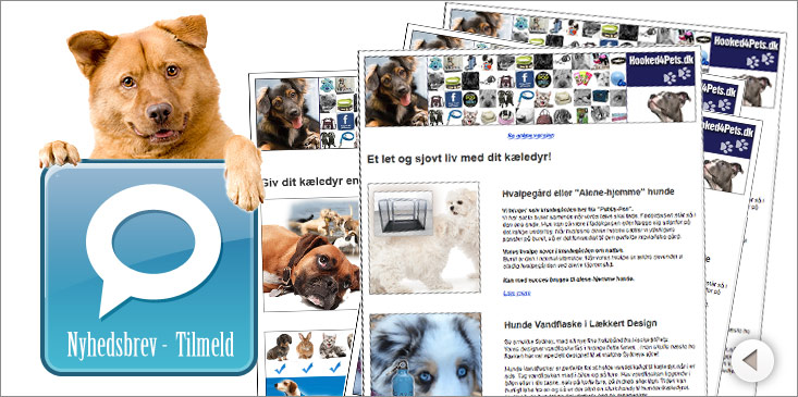 Nyhedsbrev - Hunde tøj og hunde-tilbehør