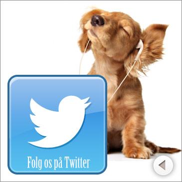 Twitter - Følg Hooked4Pets.dk på Twitter