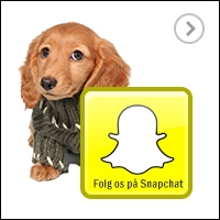 Snapchat - Følg Hooked4Pets.dk på Snapchat